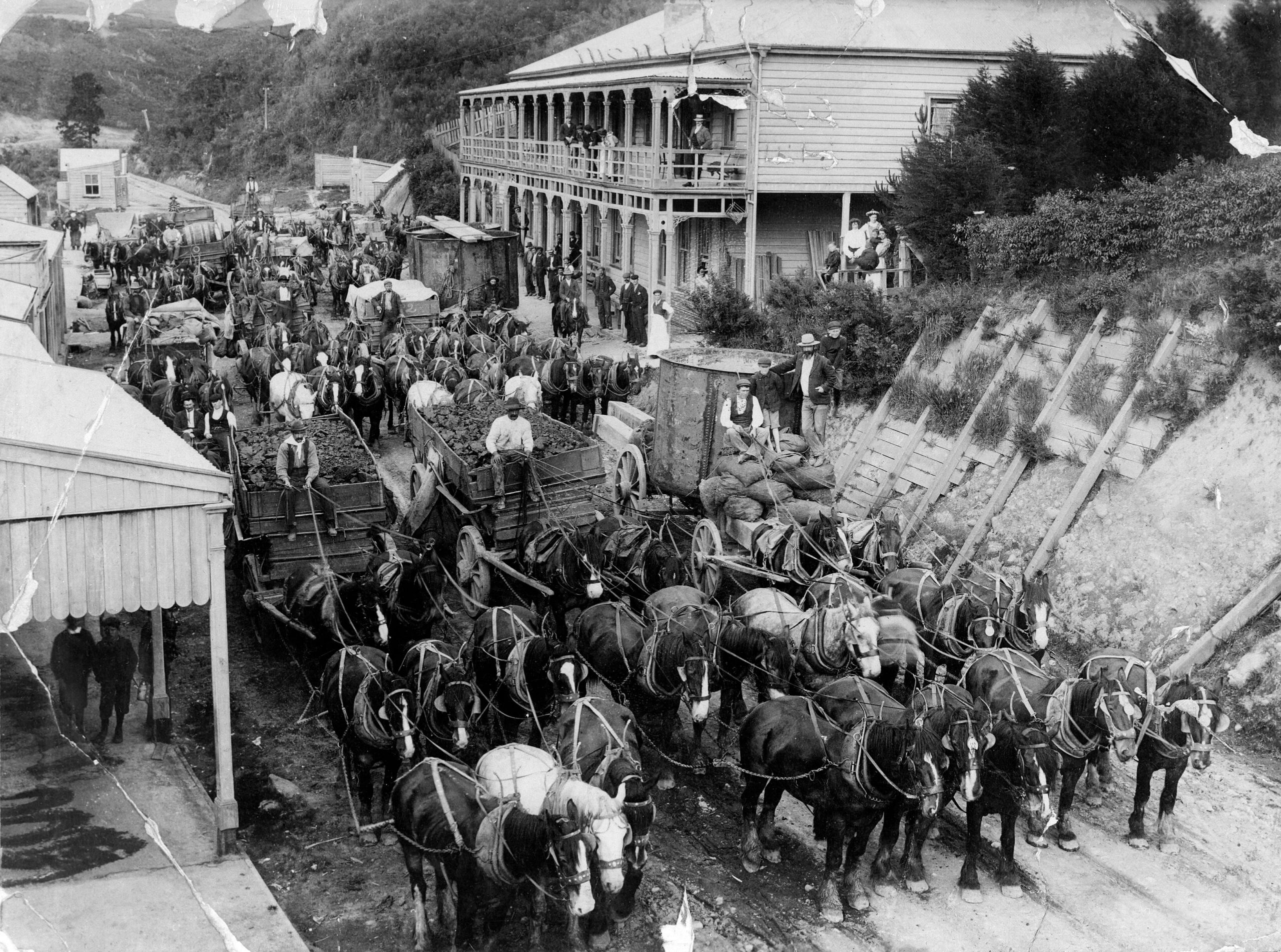 Image of Working Horses of New Zealand, from the Bullswool Farm Heritage Museums